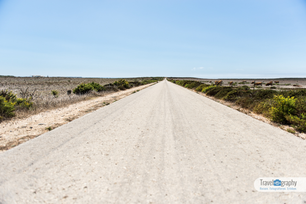 Feldweg Cabo de São Vicente