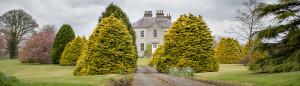 Unsere Fotoreise durch Irland: Teil 4