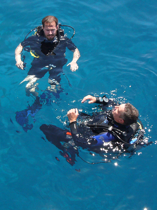 Tauchen im Golf von Aqaba
