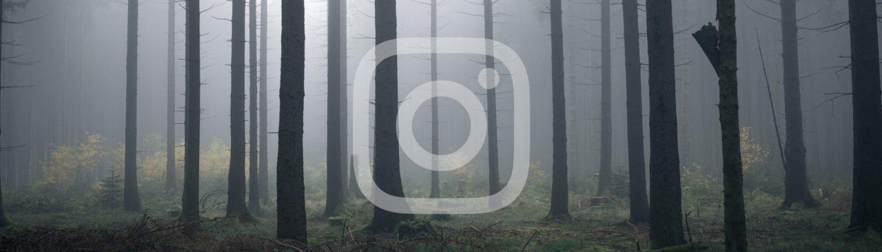 instagram-look