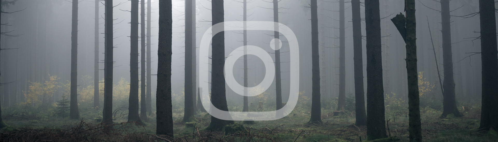Instagram Look mit Lightroom selbst erstellen – mit Presets