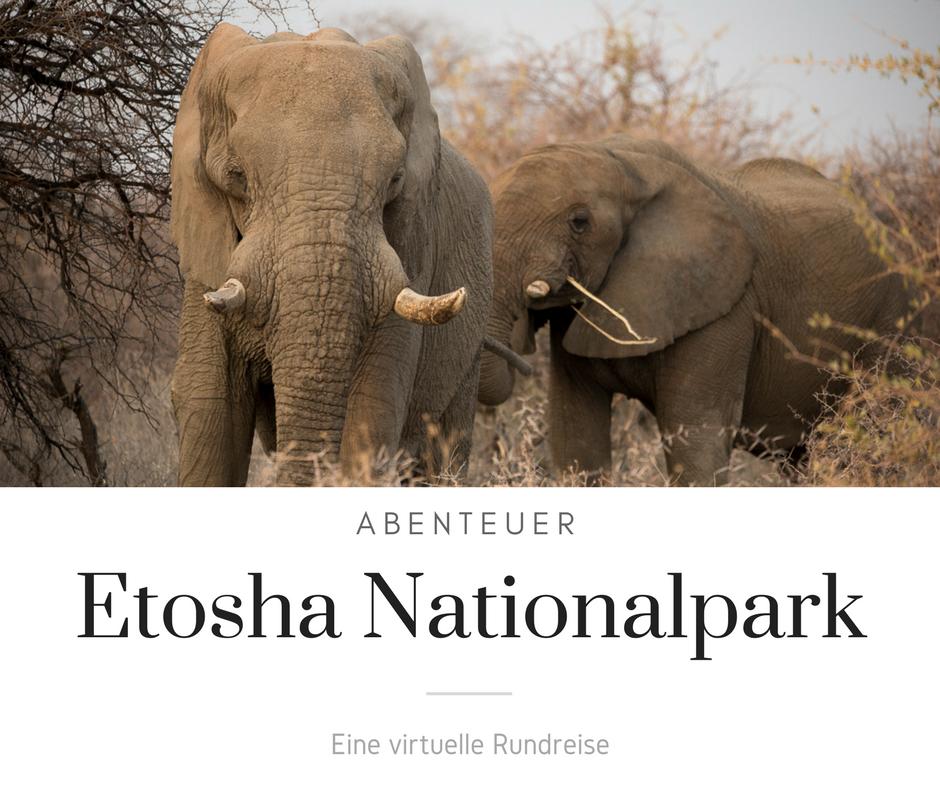 Namibia - Abenteuer Etosha Nationalpark